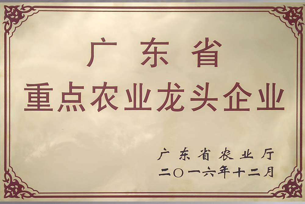 省龙头企业.jpg